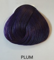 Toner La riche Directions plum